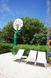 Laughing sunflower next to pool chairs at Ocean Coral & Turquesa.jpg